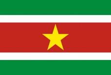 Прапор Суринаму