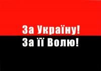 За Україну За її Волю! настольный флажок