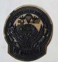 Шеврон 95 бригада Аеромобільні Війська