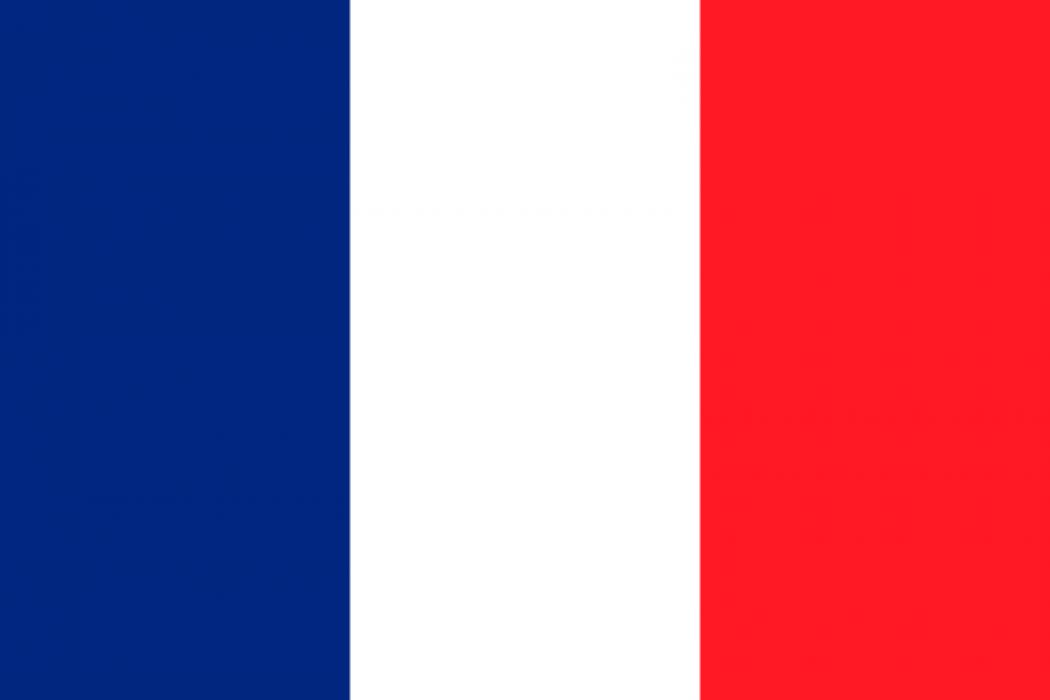 Как выглядит флаг франция